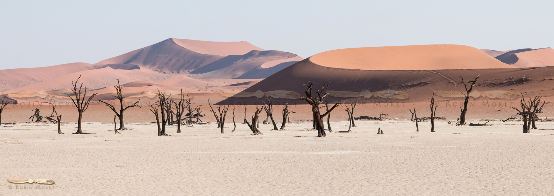 Deadvlei - Click to open panorama !